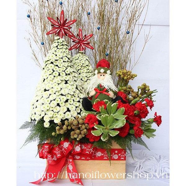 beautiful christmas flowers hanoi